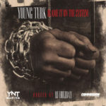 Turk Blame It On The System mixtape cover