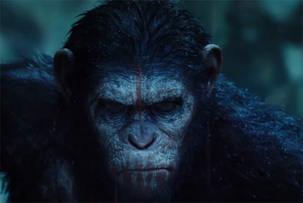 Dawn of the Planet of the Apes Movie