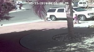 Captured On Tape: Small Boy Saved By His Heroic Cat After Dog Sneaks Up and Attacks Him