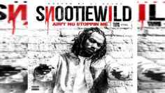 Snootie Wild – Rich Or Not (Audio)